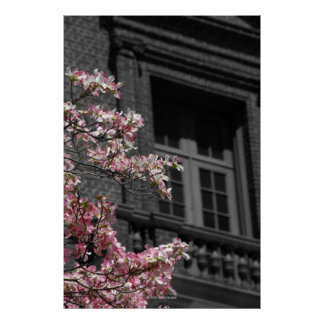 Blomstra balkongen poster