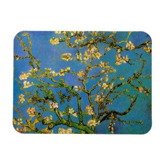 Blomstra mandelträd av Vincent Van Gogh Magnet