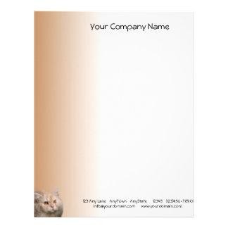 Blond katt med Topazögon på kanelbrun bakgrund Brevhuvud