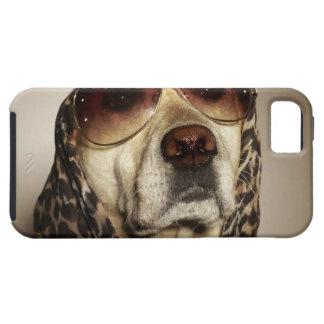Blond Labrador Retriever som ha på sig iPhone 5 Case-Mate Skal