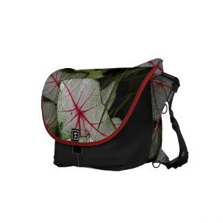 Bloodleaf messenger bag