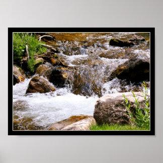 Bloomington flod poster