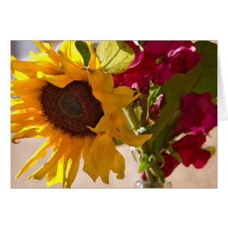 Blöta upp någon solros - notera kortet OBS kort
