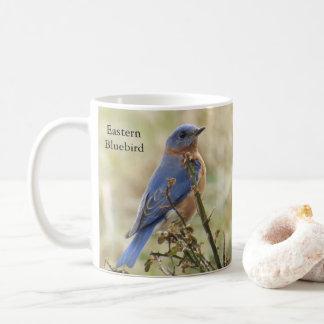 Bluebirdskaffemugg vid BirdingCollectibles Kaffemugg