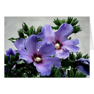 Blüten Gruß Hälsningskort