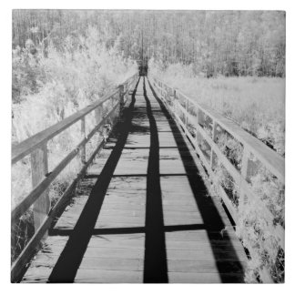 Boardwalk för korkskruvträskfristad, Florida, Kakelplatta