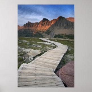 Boardwalk i Waterton glaciärinternationell Poster