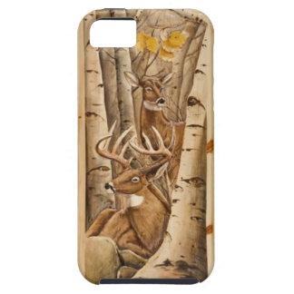 Bock & Doe i fodral för björkträdiPhone 5 iPhone 5 Cover