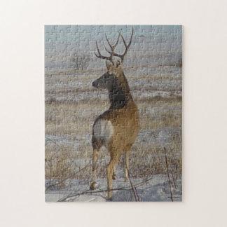 Bock för hjort för Mule D0020 Pussel Med Foto