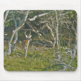 Bock OBX Mousepad för Whitetailhjort Musmatta