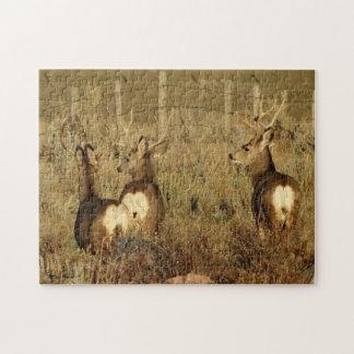Bockar för hjort för Mule D0030 Foto Pussel