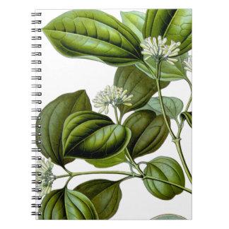 Bok för illustration för vintage för giftnötträd anteckningsbok med spiral