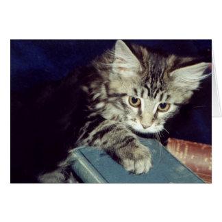 Bokar och katter hälsningskort