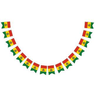 Boliviansk flagga