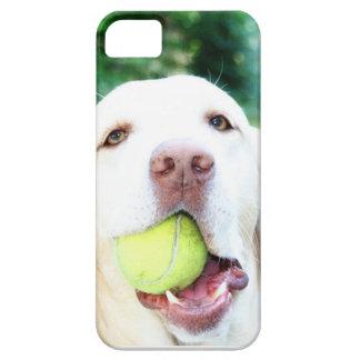 Boll för tennis för hund för Labrador Retriever iPhone 5 Skydd
