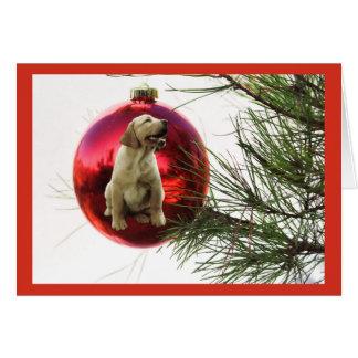 Boll Hanging3 för julkort för Labrador Retriever Hälsningskort