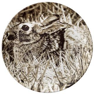 Bomullssvanskaninkanin i gräs, Sepia, Grunge Porslinstallrik