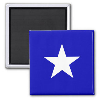 Bonnie blåttflagga magnet