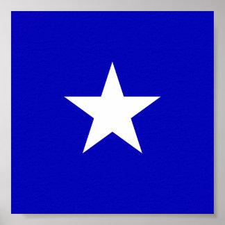 Bonnie blåttflagga poster