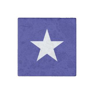 Bonnie stjärna för blåttflaggavit stenmagnet
