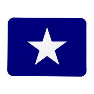 Bonnie stjärna för blåttflaggavit rektangel magnet