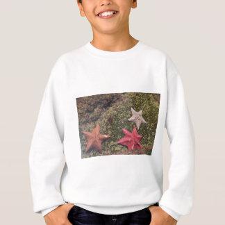 Bosatt sjöstjärna (4) .JPG T Shirts