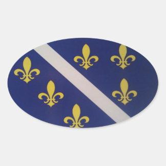 Bosnisk gammal flaggaklistermärke ovalt klistermärke