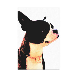 Boston Terrier Canvastryck