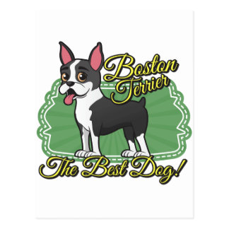 Boston Terrier - den bäst hunden! Vykort