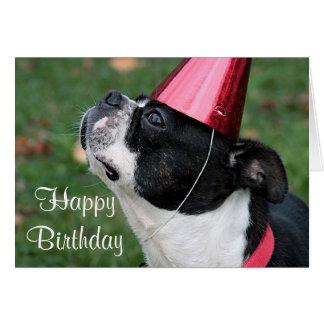 Boston terrier med en födelsedagwish hälsningskort