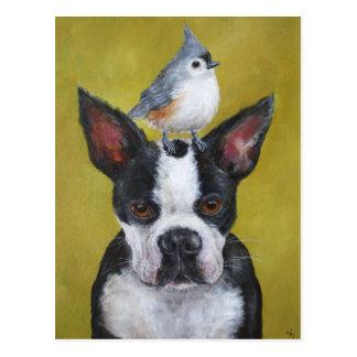 Boston Terrier & mesvykort Vykort