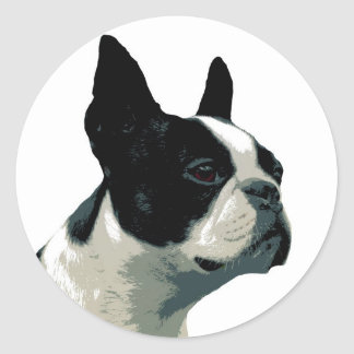 Boston Terrier Runt Klistermärke