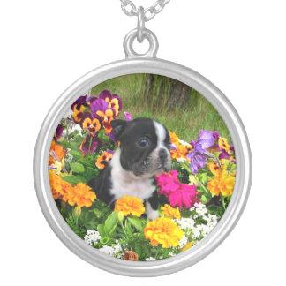 Boston Terrier Silverpläterat Halsband
