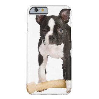 Boston terrier som bevakar det twisty ben barely there iPhone 6 skal