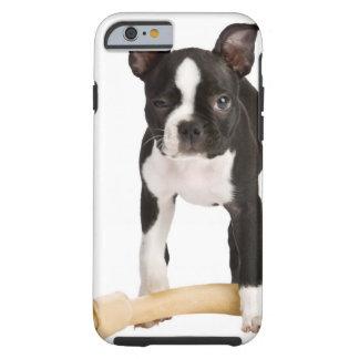 Boston terrier som bevakar det twisty ben tough iPhone 6 fodral