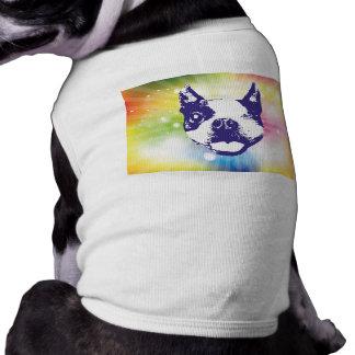 Boston Terrier - Sunburst Husdjurströja