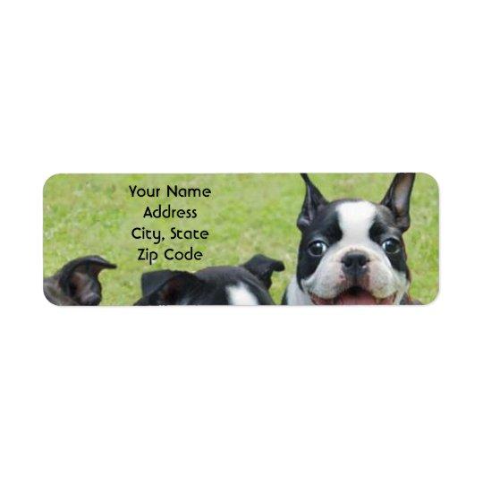 Boston Terrieradressetiketter Returadress Etikett