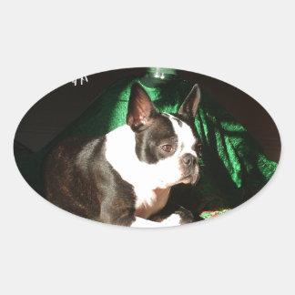 Boston Terrierjul med pipblåsare Ovalt Klistermärke