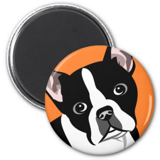 Boston Terriermagneter Magnet