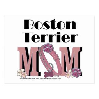Boston TerrierMAMMA Vykort