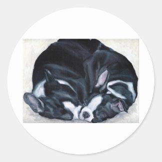 Boston Terriervalpar Runt Klistermärke