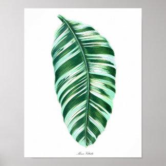 Botanisk för lövvägg för tryck #5 tropisk dekor poster