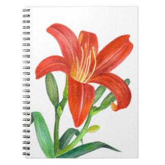 Botanisk illustration för orange lilja anteckningsbok
