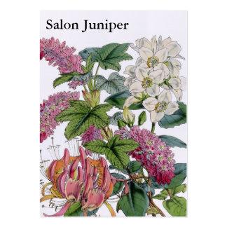 Botaniska illustrationer för vintage set av breda visitkort