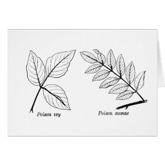 Botaniska löv för vintage hälsningskort