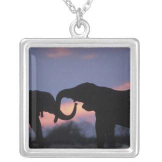 Botswana Chobe nationalpark, elefanter Silverpläterat Halsband