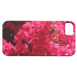 Bougainvillea iPhone 5 Skydd