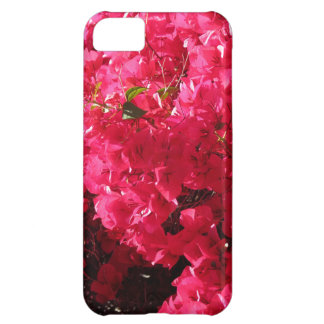 Bougainvillea iPhone 5C Mobil Fodral