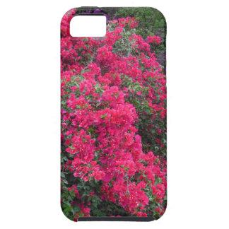 Bougainvillea iPhone 5 Case-Mate Cases
