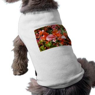 Bougainvillea Hund Tee Shirt
